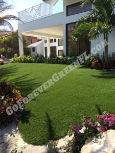 pet turf west palm beach fl