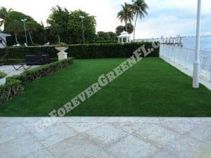 fake grass west palm beach